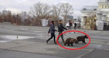 12 Απίστευτες φωτογραφίες που συναντάς μόνο στην Ρωσία