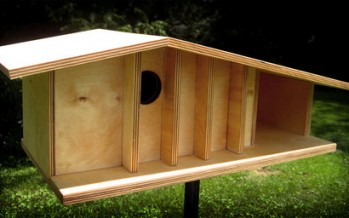 DIY Ιδέες –  Φτιάξτο Μόνος Σου – Καταπληκτικά Σπίτια Για Πουλιά!