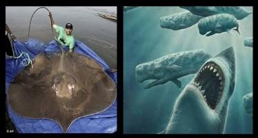 10 Τρομακτικά προϊστορικά ζώα της θάλασσας!