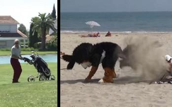 Ο Remi Gaillard ντύθηκε σκυλάκι και τρέλανε τον κόσμο!