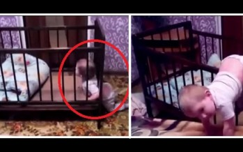 """VIDEO: Αυτός """"είναι"""" ο Παλαιοκώστας μικρός!"""