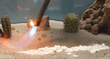 Δες τι θα γίνει αν βάλεις φωτιά σε Hg(SCN)2 μέσα στο νερό!