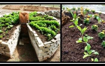 Κήπος κλειδαρότρυπα! Γιατί και πώς να τον φτιάξεις!