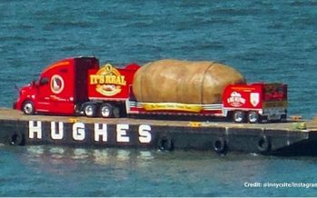Γιγαντιαία πατάτα βάρους 6 τόνων εθεάθη σε ποταμό της Ν.Υόρκης!