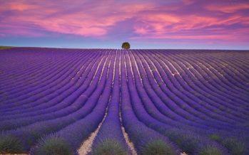 20 Εντυπωσιακά μέρη που η φύση τα έντυσε με χρώμα!