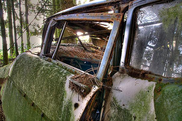 Ένα μποτιλιάρισμα ηλικίας 70 χρόνων (εικόνες) Αυτό το μποτιλιάρισμα δεν είναι σκηνή από ταινία τρόμου , αλλά ένα από τα μεγαλύτερα νεκροταφεία αυτικινήτων στο Βέλγιο. Σύμφωνα με έναν αστικό μύθο αυτά τα αυτοκίνητα είχαν μείνει πίσω από στρατιώτες των ΗΠΑ από το Β 'Παγκόσμιο Πόλεμο και αφού δεν μπορούσαν να τα στείλουν πίσω στις ΗΠΑ , αποφάσισαν να τα κρύψουν σε ένα δάσος μέχρι να καταφέρουν να τα πάρουν. Οι ντόπιοι διαφωνούν και λένε πως είναι απλά μια παλιά χωματερή οχημάτων μετά το Β 'Παγκόσμιο Πόλεμο.Αυτό το μποτιλιάρισμα δεν είναι σκηνή από ταινία τρόμου , αλλά ένα από τα μεγαλύτερα νεκροταφεία αυτικινήτων στο Βέλγιο. Σύμφωνα με έναν αστικό μύθο αυτά τα αυτοκίνητα είχαν μείνει πίσω από στρατιώτες των ΗΠΑ από το Β 'Παγκόσμιο Πόλεμο και αφού δεν μπορούσαν να τα στείλουν πίσω στις ΗΠΑ , αποφάσισαν να τα κρύψουν σε ένα δάσος μέχρι να καταφέρουν να τα πάρουν. Οι ντόπιοι διαφωνούν και λένε πως είναι απλά μια παλιά χωματερή οχημάτων μετά το Β 'Παγκόσμιο Πόλεμο.Αυτό το μποτιλιάρισμα δεν είναι σκηνή από ταινία τρόμου , αλλά ένα από τα μεγαλύτερα νεκροταφεία αυτικινήτων στο Βέλγιο. Σύμφωνα με έναν αστικό μύθο αυτά τα αυτοκίνητα είχαν μείνει πίσω από στρατιώτες των ΗΠΑ από το Β 'Παγκόσμιο Πόλεμο και αφού δεν μπορούσαν να τα στείλουν πίσω στις ΗΠΑ , αποφάσισαν να τα κρύψουν σε ένα δάσος μέχρι να καταφέρουν να τα πάρουν. Οι ντόπιοι διαφωνούν και λένε πως είναι απλά μια παλιά χωματερή οχημάτων μετά το Β 'Παγκόσμιο Πόλεμο.Αυτό το μποτιλιάρισμα δεν είναι σκηνή από ταινία τρόμου , αλλά ένα από τα μεγαλύτερα νεκροταφεία αυτικινήτων στο Βέλγιο. Σύμφωνα με έναν αστικό μύθο αυτά τα αυτοκίνητα είχαν μείνει πίσω από στρατιώτες των ΗΠΑ από το Β 'Παγκόσμιο Πόλεμο και αφού δεν μπορούσαν να τα στείλουν πίσω στις ΗΠΑ , αποφάσισαν να τα κρύψουν σε ένα δάσος μέχρι να καταφέρουν να τα πάρουν. Οι ντόπιοι διαφωνούν και λένε πως είναι απλά μια παλιά χωματερή οχημάτων μετά το Β 'Παγκόσμιο Πόλεμο.
