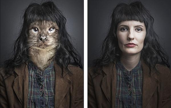 Γάτες ποζάρουν ντυμένες σαν τα αφεντικά τους Γάτες ποζάρουν στο φακό ντυμένες σαν τα αφεντικά τους σε μια σειρά φωτογραφιών με τίτλο Undercats.. Είναι ομολογουμένως λίγο ανατριχιαστικό το αποτέλεσμα. Παλιότερα ο ίδιος φωτογράφος είχε κάνει με τον ίδιο τρόπο και μια σειρά φωτογραφιών παρόμοια με αυτή, μόνο που στη θέση της γάτας πυ ποζάρει δίπλα από το αφεντικό της υπήρχε σκύλος. Ο Sebastian Magnani ο 28χρονος φωτογράφος που έκανε τη σειρά φωτογραφιών, επεξεργάστηκε την κάθε φωτογραφία από έξι έως οκτώ ώρες.