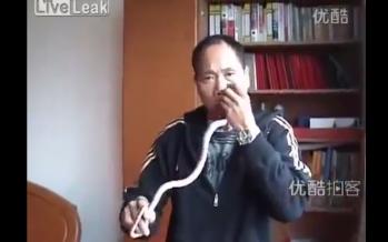 Κινέζος βάζει φίδι στη μύτη του και το βγάζει από το στόμα…