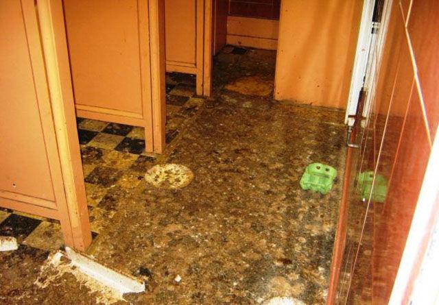 εγκαταλελειμμένο μπαρ Το εγκαταλελειμμένο μπαρ στο Porth της Αγγλίας, παρέμενε άδειο για τρεις μήνες μετά το κλεισιμό του μέχρι που ανακάυψαν πως κάτι πολύ περίεργο συνέβαινε στο εσωτερικό του.. Η αστυνομία βρήκε πάνω από 1000 δενδρύλια κάνναβης να αναπτύσσονται και στους τρεις ορόφους του κτιρίου που κόστιζαν πάνω απο 1,7 εκατομμύριο δολάρια...