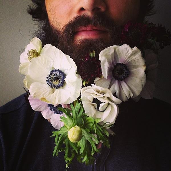 λουλούδια στα μούσια aggouria.net n (1)
