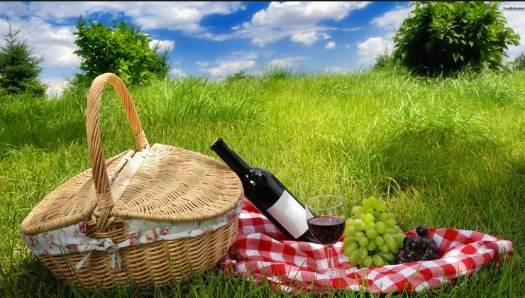 picnic-www.aggouria.net