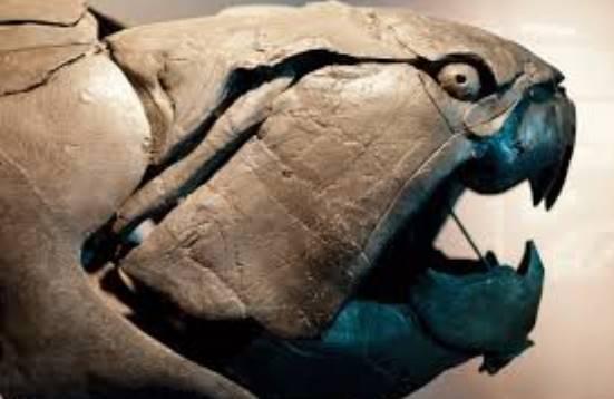 Dunkleosteus-thalassio-proistoriko-zwo