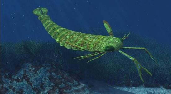Jaekelopterus-rhenaniae-terastios-proistorikos-skorpios