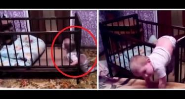 VIDEO: Αυτός «είναι» ο Παλαιοκώστας μικρός!