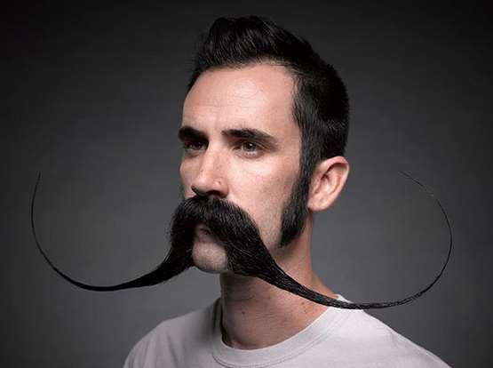 periergo moustaki