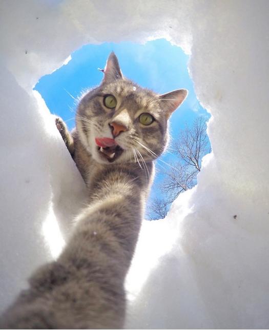 selfie gata xionia