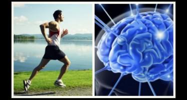 Οι καλύτερες ασκήσεις για να «γυμνάσεις» το μυαλό σου!