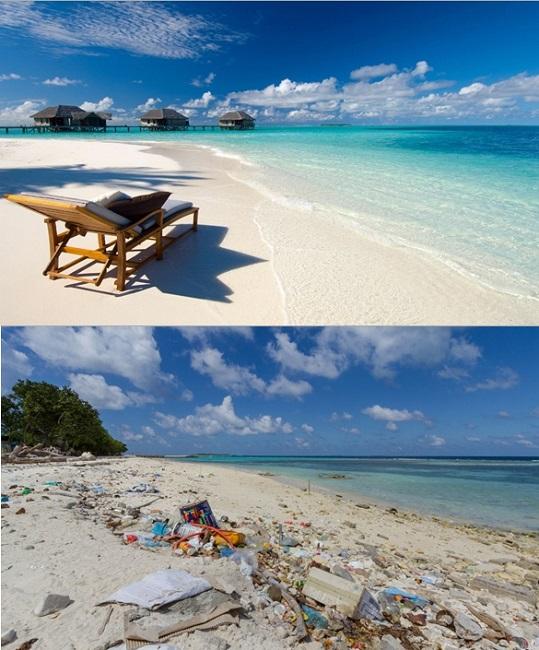 paralies maldives