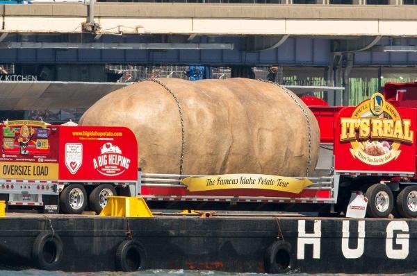 patata indaho aggouria.net