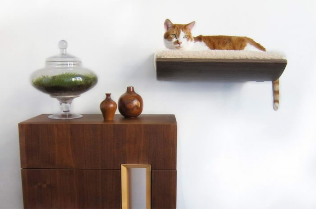 9c5a2d203ce0 10 Έξυπνες ιδέες από έπιπλα για γάτες και μικρόσωμα σκυλάκια!