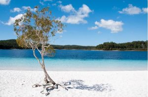 thalassa-australia