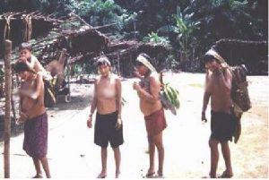 yanomani vrazilia