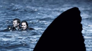 open-water-sharks