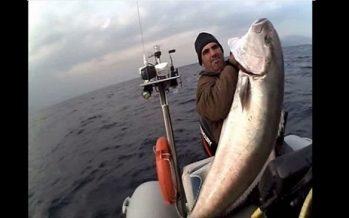 Βολιώτης ψαράς βγάζει 46kg ψάρι με ένα καλάμι!