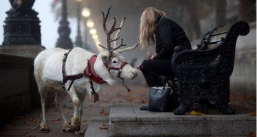 15 Φανταστικές φωτογραφίες σε σωστά στιγμιότυπα!