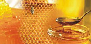 meli-honey