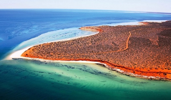Shark Bay eikones