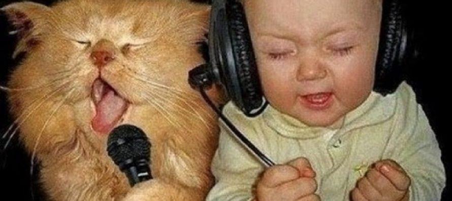 Αστεία στιγμιότυπα με ζώα που θα σου φτιάξουν τη μέρα!
