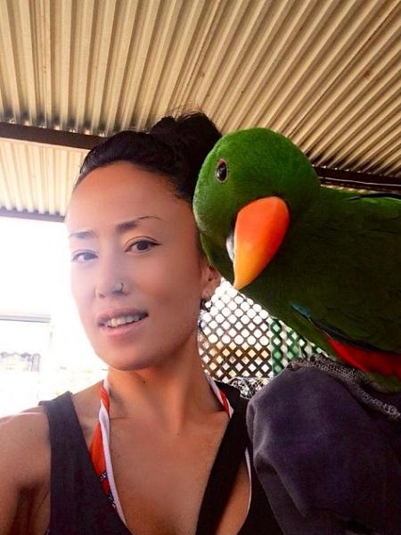 eksotika poulia papagalos