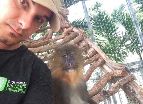 selfie zoologikos kipos
