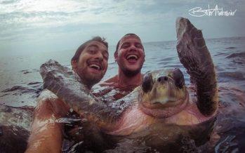 21 Απίστευτες selfies με ζώα που ποζάρουν στον φακό!