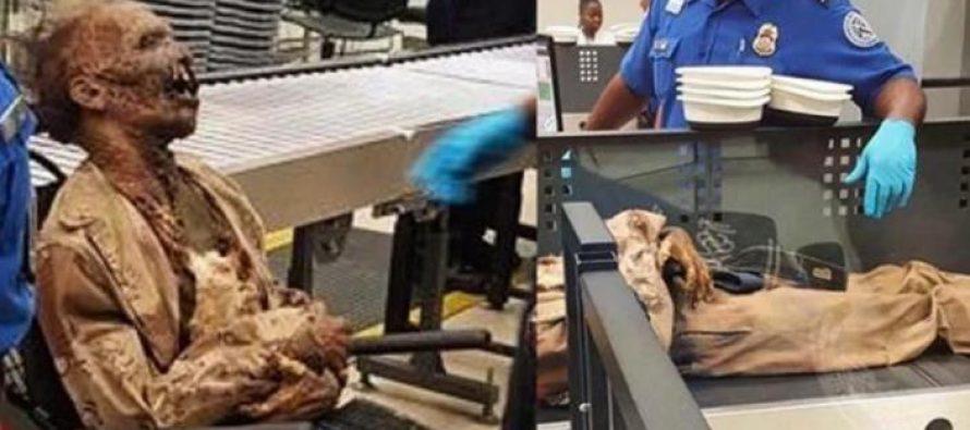 15 Περίεργα πράγματα που εντόπισε η ασφάλεια αεροδρομίων!