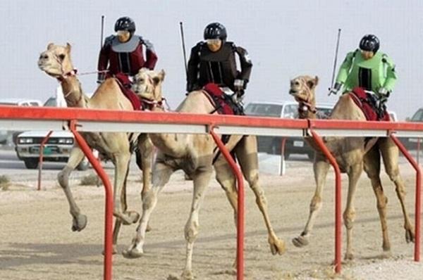 agones kamiles