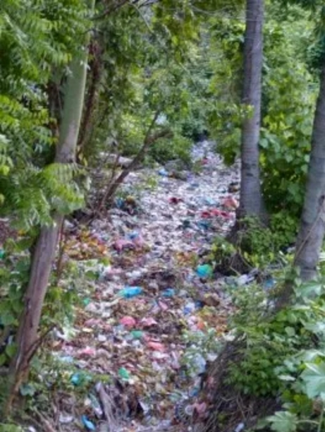 pollution recycle plastic