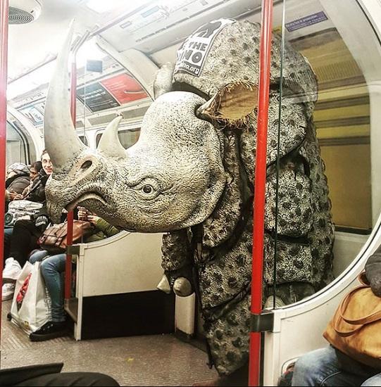 perierges eikones metro aggouria.net