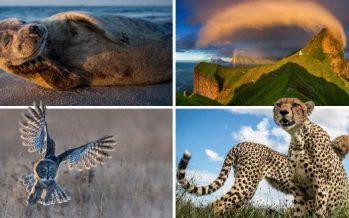 30 Φωτογραφίες από το National Geographic για το 2017!