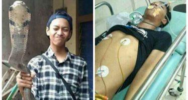 14χρονος πέθανε μετά απ'το τσίμπημα της «κατοικίδιας» κόμπρας του!