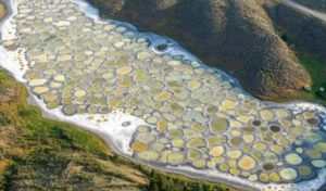 Η μοναδική λίμνη που κάθε καλοκαίρι είναι γεμάτη κηλίδες!