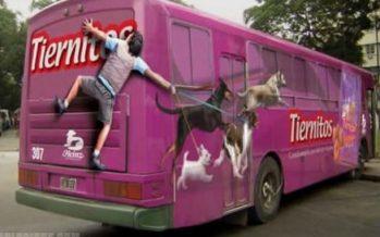 Οι 14 πιο έξυπνες διαφημίσεις που μπορείς να δεις σε λεωφορεία!
