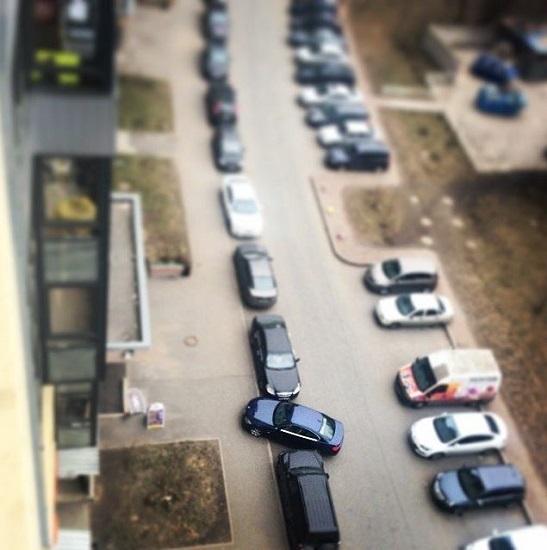 ginekes parkarisma