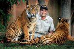 tigris aggouria.net