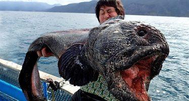 20 Ευτράπελα που έγιναν κατά τη διάρκεια του ψαρέματος!