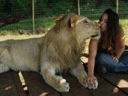 Φιλίες ανθρώπων και ζώων που δεν συναντάς κάθε μέρα!