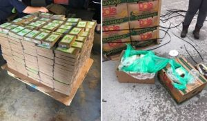 540 Κιλά κοκαΐνης βρέθηκαν σε κουτιά μπανάνας στο Τέξας!