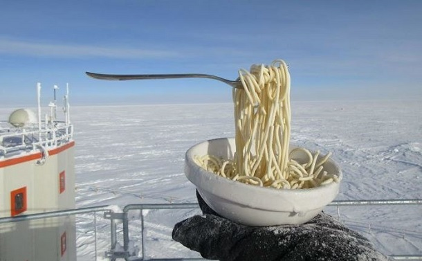 pagomeni makaronada antarktiki