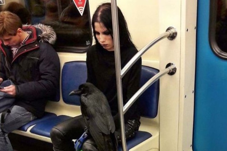 koraki me metro